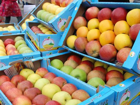 Pommes, poires and co' : c'est reparti!