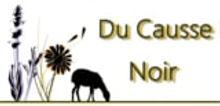 logo_DuCausseNoir.jpg
