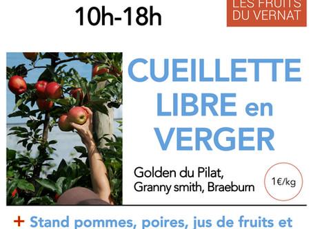 Vente de pommes en Cueillette libre