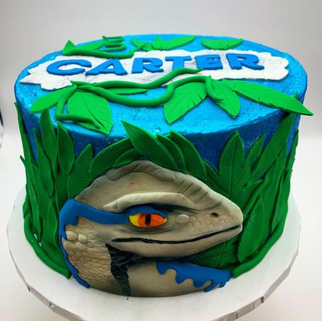 Custom Childrens Dinosaur Cake