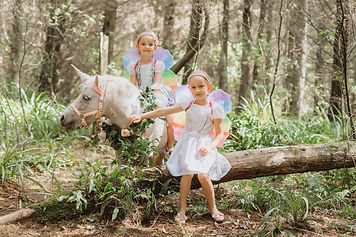 Unicorn forest photos