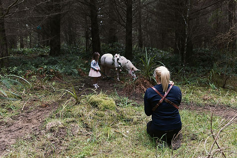 Unicorn forest photos Invercargill