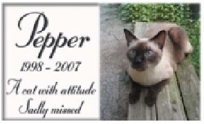 Low Cost Pet Memorial Plaques