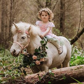 unicorn-photos-nz.jpg