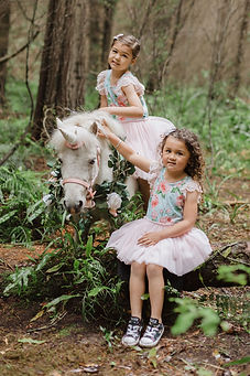 unicorns-invercargill.jpg