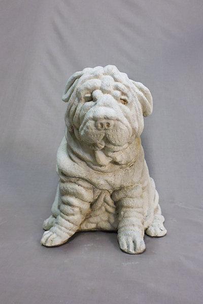 Sharpei Pup