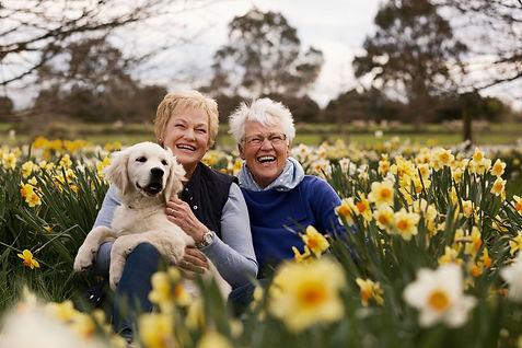 Invercargill_Daffodil_Family+Photographe
