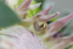 Invercargill_Wedding_Photographer_Ring_Detail