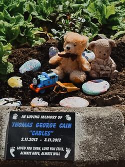 Teddy Bears at Headstone