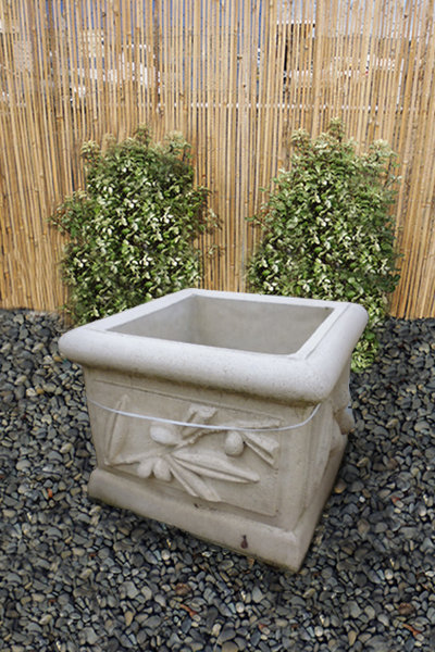 Olive Planter – Small Square