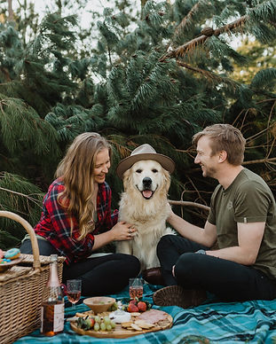 pine-forest-picnic-with-dog-invercargill