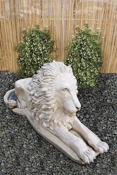 Tuscan Lion