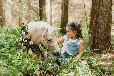 sheep-the-unicorn.jpg