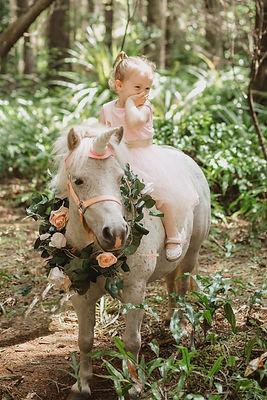 unicorn-photos-invercargill.jpg