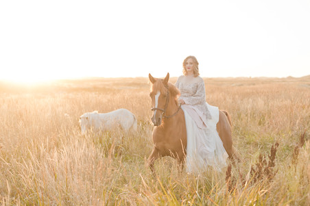 Invercargill photographer - photoshoot with bride at sunset and horses