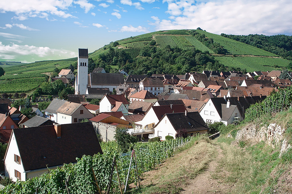 Village Alsacien - Salon Immo du Kochersberg