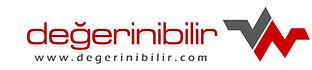 degerinibilir_logo (1).jpg