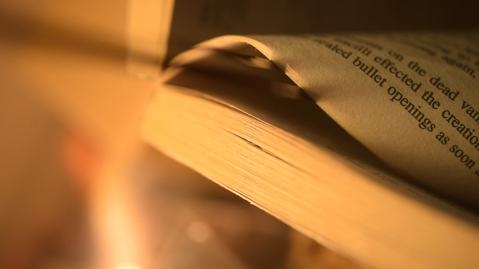 Book Cover for blandaf.jpg