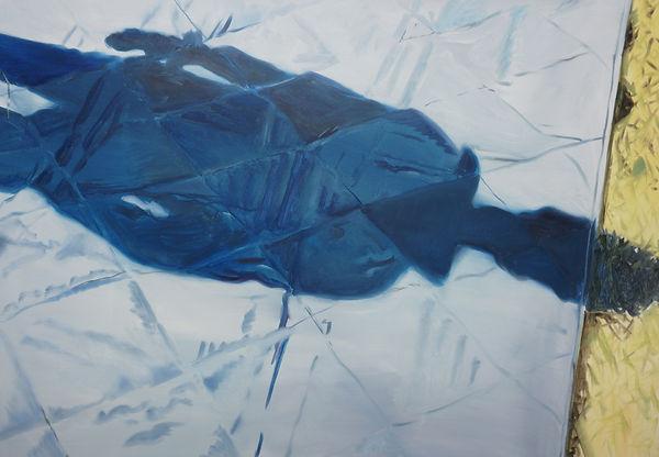 Blanket Shadow.jpg