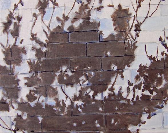shaded wall.jpg