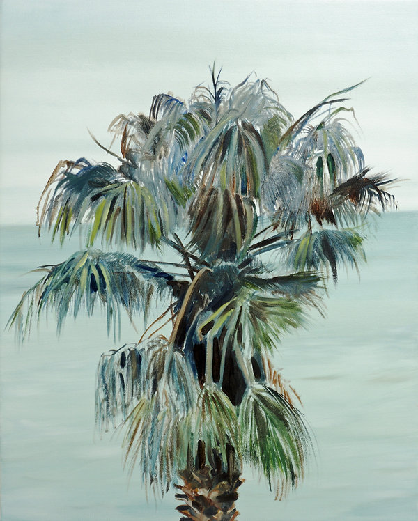 Cape Palm cropped.jpg