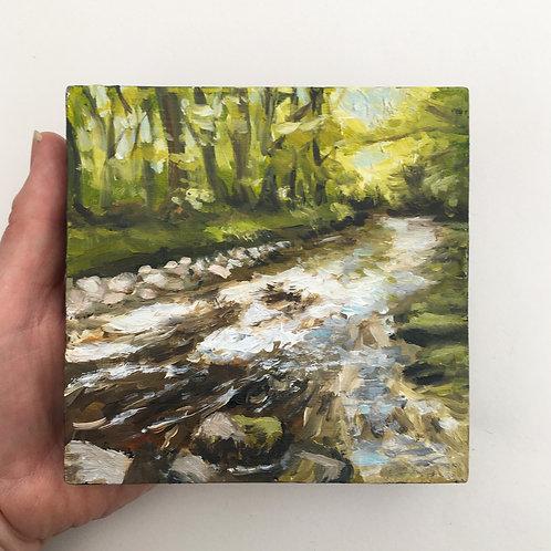 No.9 Forest Stream
