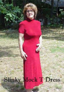 T1066 Short Sleeve Mock Turtleneck Acetate Dress