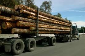 Lumber Trucks Seen Regularly