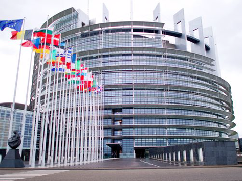 A Dummy Guide to the European Parliament