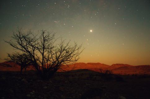 Namibia Nights