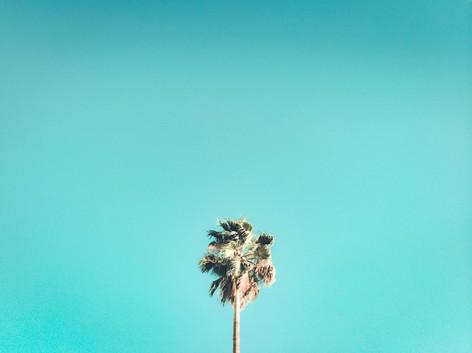 Vakantie Magazine