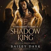Bailey Dark shadow king 1 audio.jpg
