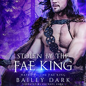 Stolen By the Fae King-Audiobook.jpg