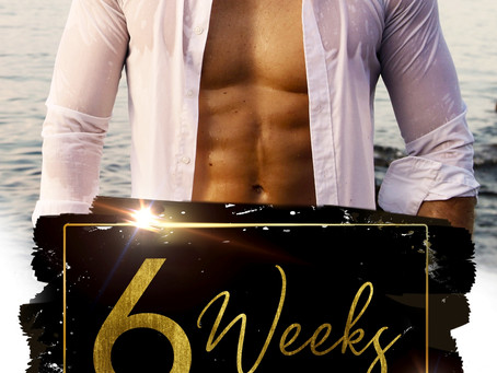6 Weeks: A Forbidden Brother's Best Friend Standalone Romance (Countdown to Pleasure Book 2)