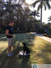 Training Your Dog and Walking Your Cat