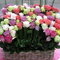 Piqué de roses dans panier carré