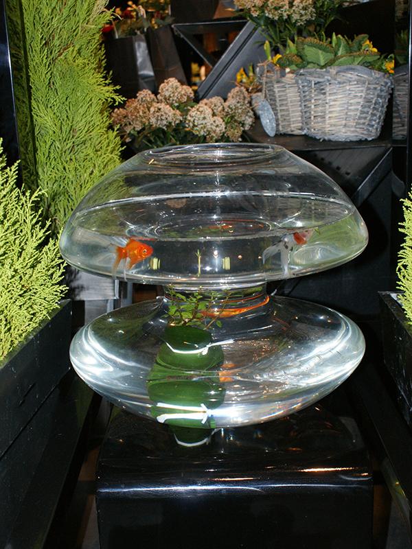 vase-double,aquarium,fleuriste,auxerre,yonne.JPG
