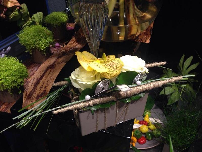 jardiniere,plante,auxerre,yonne