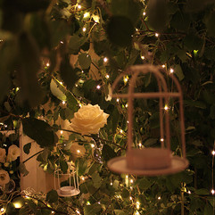 Détails sur l'arbre lumineux