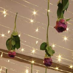 Ciel de lumière et roses suspendues