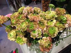 fleurs,originales,fleuriste,auxerre,yonne.jpg