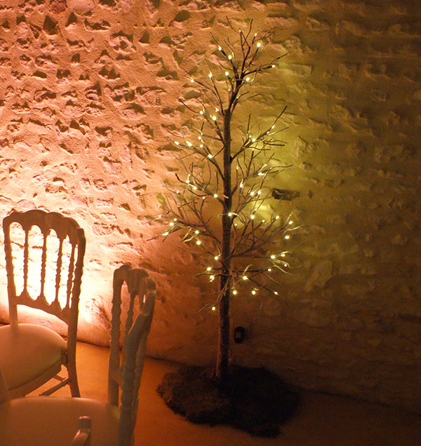 location-arbre-lumineux-yonne-bourgogne.