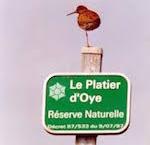 Platier d'Oye