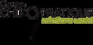 Logo Centre chiropratique solutions santé