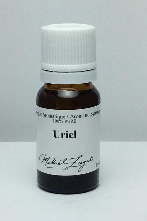 Synergies énergétiques - Archange Uriel