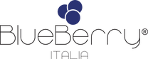 Blueberry Logo.png
