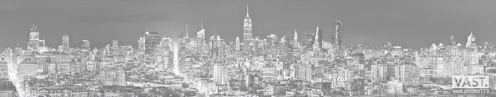 Banner_BW_NYC_1_edited.jpg