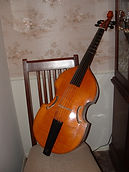 Michael Plant 6-string bass