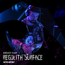 Regolith Surface