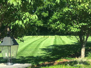 3 Key Steps for a Beautiful Lush Lawn Next Spring: Aerate, Compost, Overseed (Part 1)